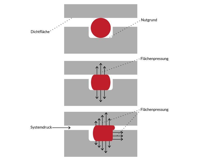 KREMER - Wirkungsweise von O-Ringen